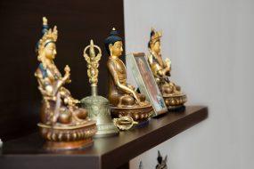 Budizmo mokymų programa